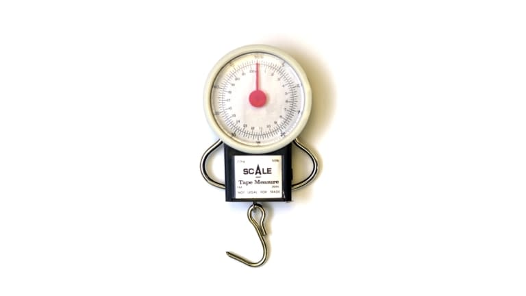 Eagle Claw 50 lb. Dial Scale & Tape Measure