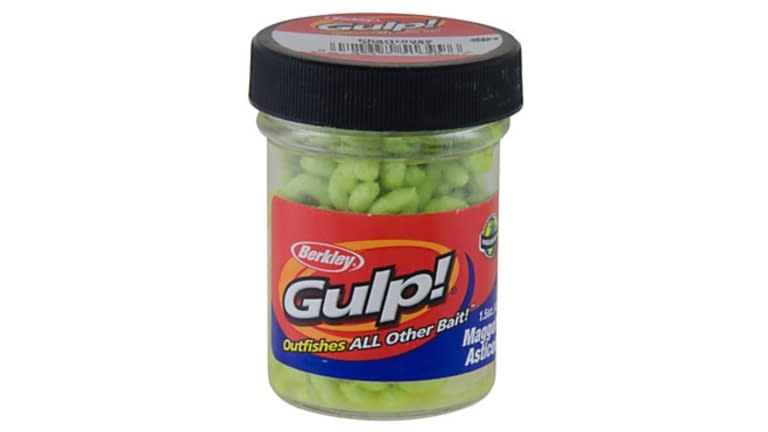 Berkley Gulp! Maggots - GMG-CH